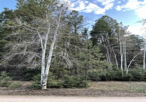 67 Armijo, Angel Fire, New Mexico 87710, ,Lots/land,For Sale,Armijo,106947