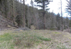 Highway 578, RED RIVER, New Mexico 87558-0578, ,Lots/land,For Sale,Highway 578,103334