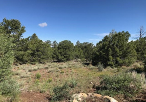 TBD FSR493 Tract C, Lama, New Mexico 87556, ,Lots/land,For Sale,Tract C,107301