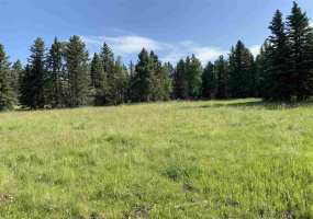 Lot 188 Meadow Glen, Angel Fire, New Mexico 87710, ,Lots/land,For Sale,Meadow Glen,107380