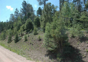 lot 1565 country club III, angel fire, New Mexico 87710, ,Lots/land,For Sale,country club III,107390