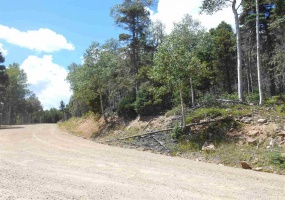 Lot 1461 Peralta Drive, Angel Fire, New Mexico 87710, ,Lots/land,For Sale,Peralta Drive,100518