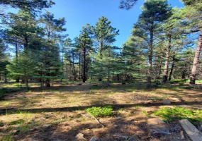 Lot 146 San Andres Dr, Angel Fire, New Mexico 87710, ,Lots/land,For Sale,San Andres Dr,107600