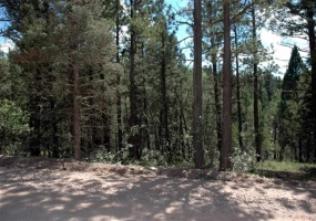 Lot 1552 Camino Real, Angel Fire, New Mexico 87710, ,Lots/land,For Sale,Camino Real,103127