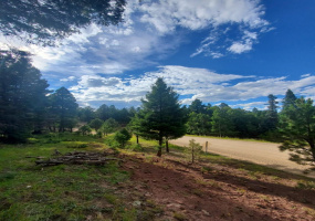 Lot 268 Back Basin, Angel Fire, New Mexico 87710, ,Lots/land,For Sale,Back Basin,107617