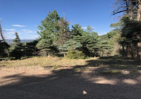 372 Vail Loop, Angel Fire, New Mexico 87710, ,Lots/land,For Sale,Vail Loop,107764