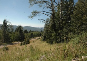 lot 1262 starlight overlook, angel fire, New Mexico 87710, ,Lots/land,For Sale,starlight overlook,107780