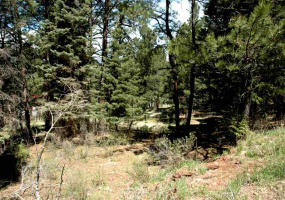 Lot 73 Mammouth Mountain Road, Angel Fire, New Mexico 87710, ,Lots/land,For Sale,Mammouth Mountain Road,103180