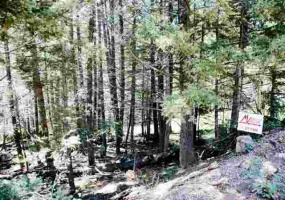 Lot 190 Taos Drive, Angel Fire, New Mexico 87710, ,Lots/land,For Sale,Taos Drive,103226