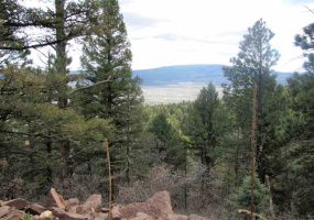Lot 54 Taos Pines Ranch, Angel Fire, New Mexico 87710, ,Lots/land,For Sale,Taos Pines Ranch,103318
