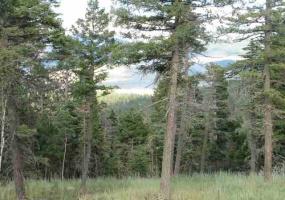 Lot 11 Palo Flechado Ridge Road, Angel Fire, New Mexico 87710, ,Lots/land,For Sale,Palo Flechado Ridge Road,103441